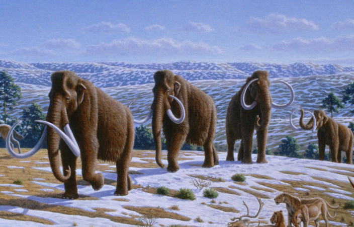 world-mammoth