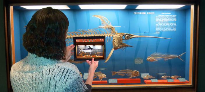 swordfish-app