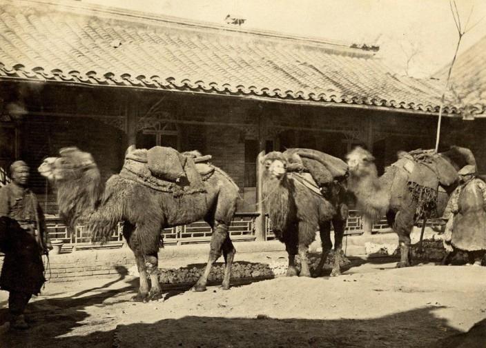 Редкие фотографии Пекина второй половины XIX века