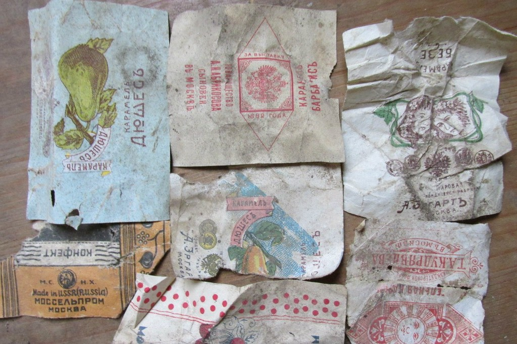 Birds saved centuries old documents in their nests