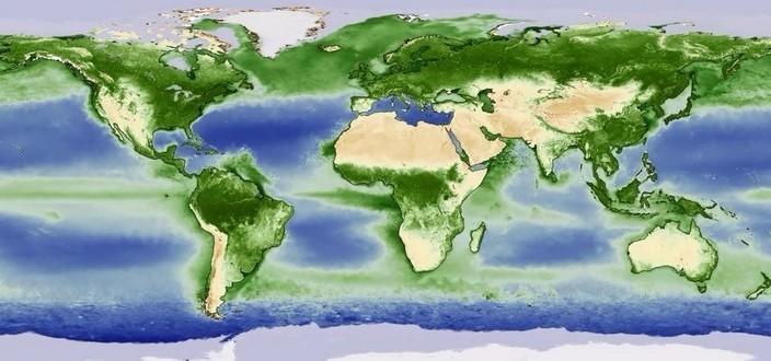 Год растительной жизни на Земле